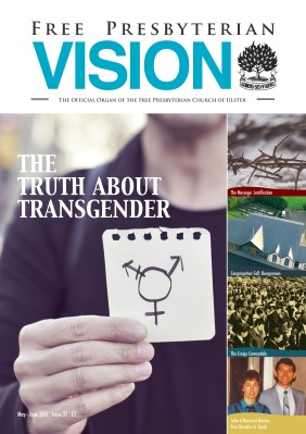 Issue 27 - FP Vision May 2017
